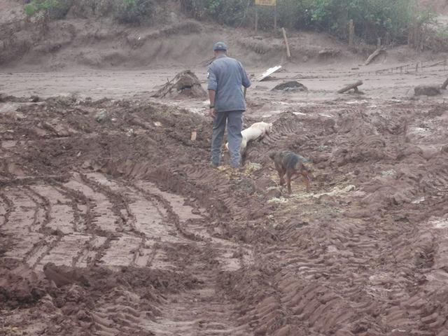 O acesso ao local é difícil.  (Foto: Reprodução / Facebook /  Instituto de Defesa dos Direitos Animais de Ouro Preto)
