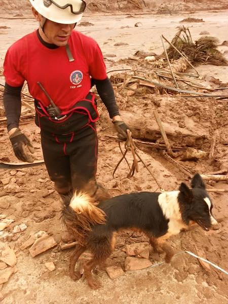 Resgate na lama.  (Foto: Reprodução / Facebook /  Corpo de Bombeiros Militar de Minas Gerais)