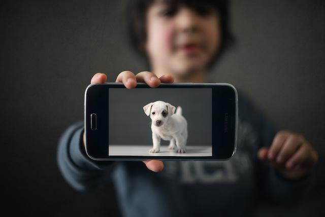 Foto de Vanya-Baramova, da Bulgária. (Foto: Reprodução / child photo competition)
