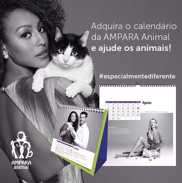 O calendário traz uma bela mensagem. (Foto: Reprodução / Instagram / Ampara Animal)