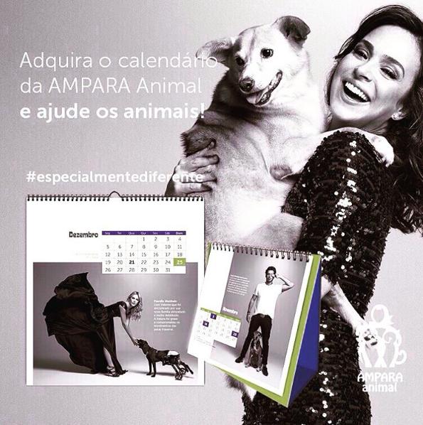 """""""Especial é ser diferente"""" é o tema do calendário 2016 da Ampara Animal. (Foto: Reprodução / Instagram / Ampara Animal)"""