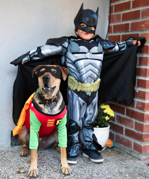 A convivência com os cães é importante para as crianças. (Foto: Reprodução / Instagram / mommasgonecity)