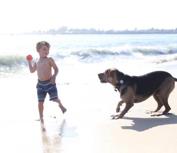 A relação entre cães e humanos traz benefícios desde a infância. (Foto: Reprodução / Instagram / mommasgonecity)