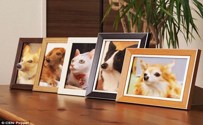 Retratos em 3D. (Foto: Reprodução / Bark Post)