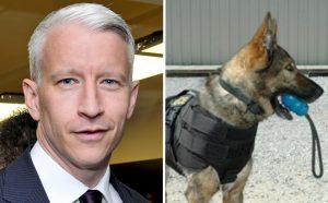 Além de divulgar a campanha, Anderson Cooper fez generosa doação. (Foto: Reprodução / Wikimedia Commons / Elite K9)