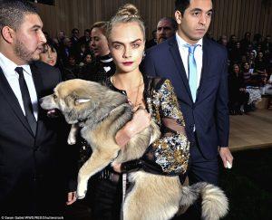 Cara chegou ao desfile da Chanel acompanhada de seu cãosinho Leo. (Foto: Reprodução / Swan Gallet / WWD / REX / Shutterstock)