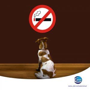 Parar de fumar vai ajudar a sua saúde e a saúde do seu animal. (Foto: Reprodução / Ceva)