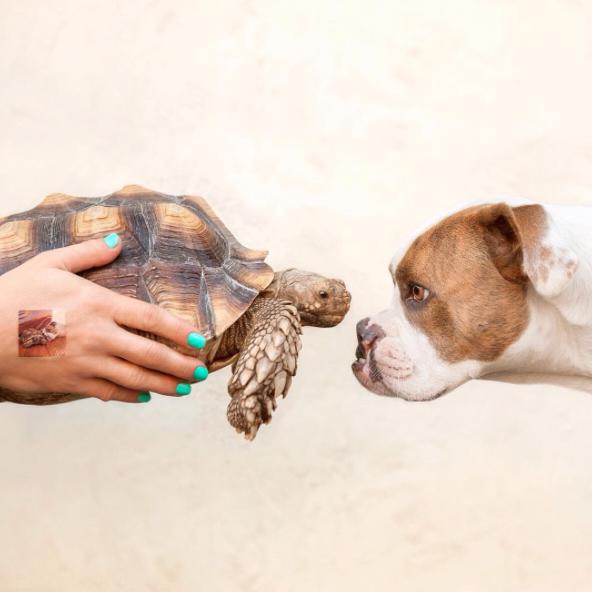 Uma amizade pra vida inteira! (Foto: Reprodução / Instagram)