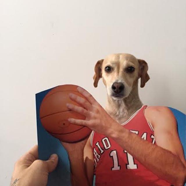 Butters se tornou um jogador de basquete. (Foto: Reprodução / Bark Post / Jay Riggio)