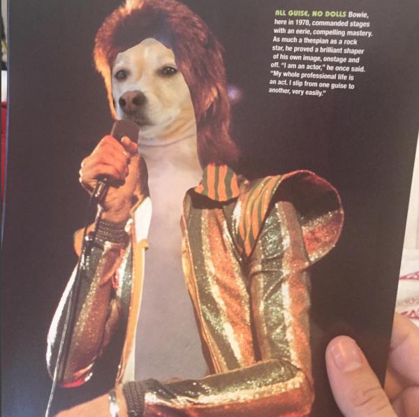 Uma homenagem à David Bowie. (Foto: Reprodução / Instagram / Jay Riggio)