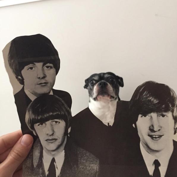 Beatles. (Foto: Reprodução / Instagram / Jay Riggio)