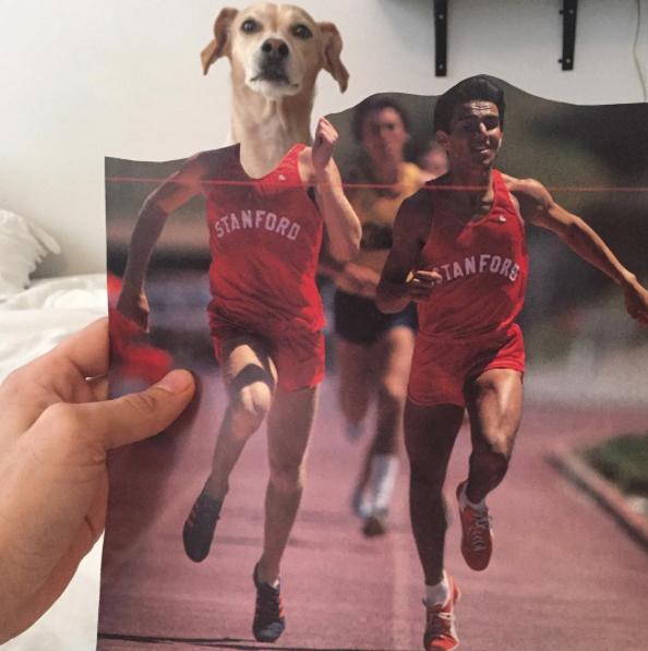 Atletismo. (Foto: Reprodução / Instagram / Jay Riggio)