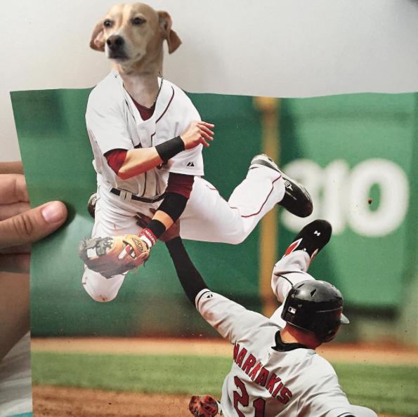 Butters se aventurando no baseball. (Foto: Reprodução / Instagram / Jay Riggio)