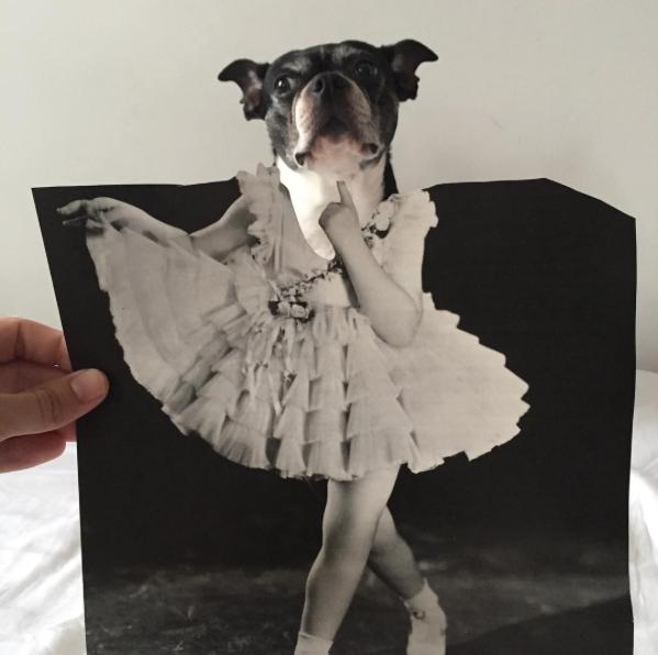 Uma dama. (Foto: Reprodução / Instagram / Jay Riggio)