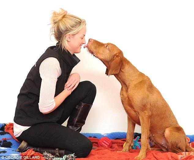 Os cães são capazes de reconhecer nosso humor. (Foto Ilustrativa: Reprodução  / Daily Mail UK)