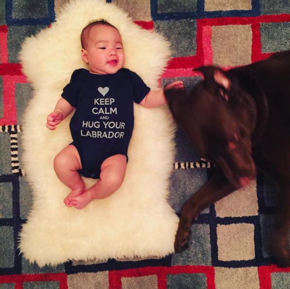 Lucy Liu orgulhosa do filho Rockwell com seu labrador Apple. (Foto: Reprodução / Instagram)