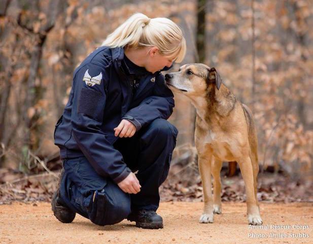 Voluntária da ONG Animal Rescue Corps com um dos cachorros. (Foto: Reprodução / Facebook / Animal Rescue Cops)
