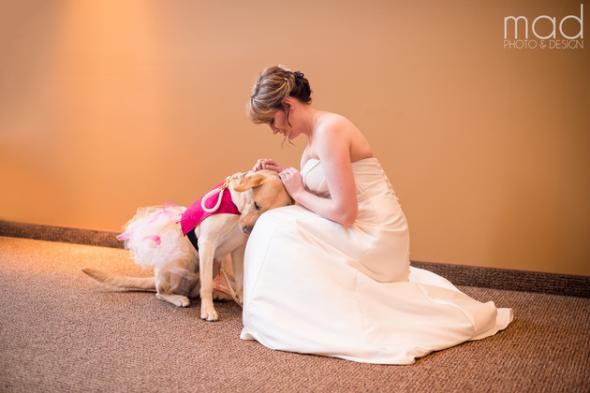 A cachorra Bella deixando sua tutora mais calma antes do casamento. (Foto: Reprodução / Life With Dogs)