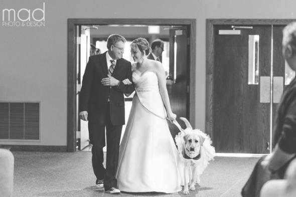 A cadela Bella também participou da cerimônia. (Foto: Reprodução / Life With Dogs)