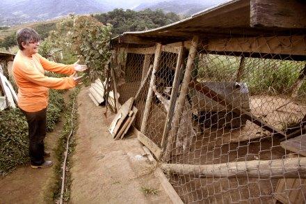 Dochie mostrando o canil. (Foto: Reprodução / Portal Litoral Norte)