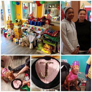Em seu aniversário de 10 anos, Jada ganhou uma festa no abrigo, que recebeu bastante doações da comunidade. (Foto: Reprodução / Facebook Humane CNY)