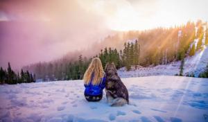 Para evitar que o cão fosse agredido pelo então namorado, Amanda criou coragem e força para finalmente abandoná-lo de vez. (Foto: Reprodução / Life Daily)