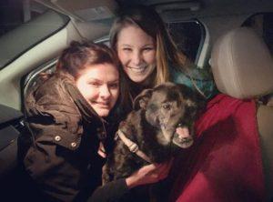 O cão está em um lar temporário com uma família cheia de amor. (Foto: Reprodução / SNARR)