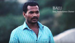 Balu passou 10 anos juntando dinheiro para comprar uma van para ajudar animais abandonados. (Foto: Reprodução / I Heart Dogs)