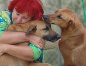 A mudança que um cão fez na sua vida foi tão grande, que Helene quis fazer mais pelos animais abandonados. (Foto: Reprodução / The Dodo / Helene Wirt)