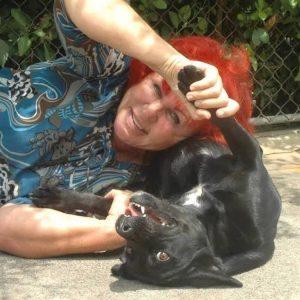 Helene se preocupa com a saúde e com a felicidade e diversão dos cães. (Foto: Reprodução / The Dodo / Helene Wirt)