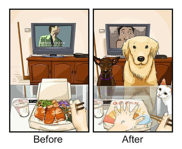 cachorro-antes-depois-quadrinho-01
