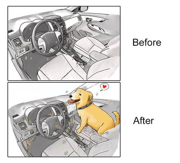 cachorro-antes-depois-quadrinho-02