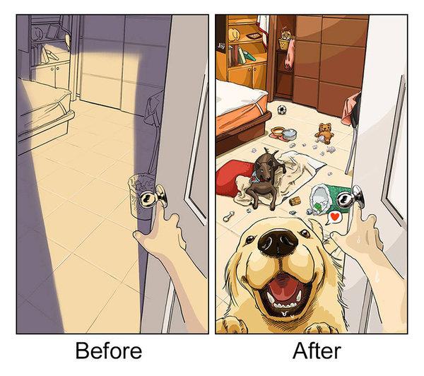cachorro-antes-depois-quadrinho-07