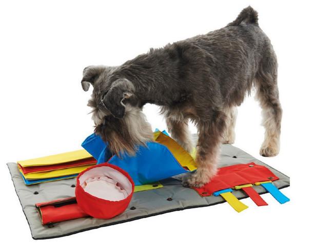 Um tapete cheio de atividades para distrair e divertir seu cão. (Foto: Divulgação / Pup Life)