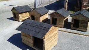 Desde o início do programa, já foram doadas pelos adolescentes mais de 600 casinhas de cachorro. (Foto: Reprodução / Facebook Friends of Jacksonville Animals, Inc.)