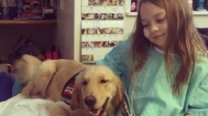 Apesar do tratamento duro, Gia, de nove anos, fica muito mais feliz com a presença do cão Drummer. (Foto: Reprodução / I Heart Dogs)