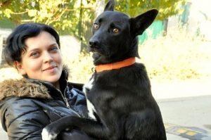 Nina cuidou do cão que havia sido atropelado até que ele ficasse 100% recuperado. (Foto: Reprodução / Life With Dogs)
