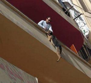 Bella ficou pendurada pela corrente após pular da varanda até que alguém a resgatasse. (Foto: Reprodução / SNARR)