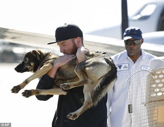 Conner Lamb carregando a cachorra Luna. (Foto: Reprodução / Daily Mail UK)