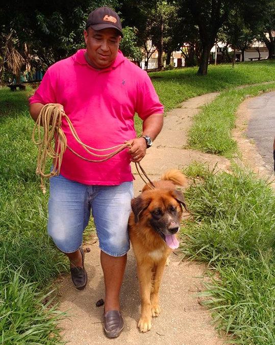 O cão Lincoln foi adotado por Neto. (Foto: Reprodução / Facebook / Cristiane Marino)
