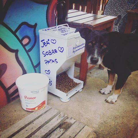 Comedouros coletivos para cães e gatos que vivem nas ruas de Jericoacoara. (Foto: Reprodução / Facebook / Jeri Sobre Patas)