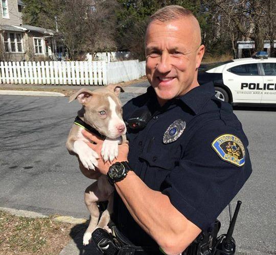 O policial Robert Breitfeller salvou o filhote de pit bull durante um incêndio. (Foto: Reprodução / Facebook / Stroud Area Regional Police Department)