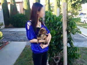 Cães-resgatados-do-comércio-de-carne-ajudam-pessoas-que-sofreram-violência-pdd2