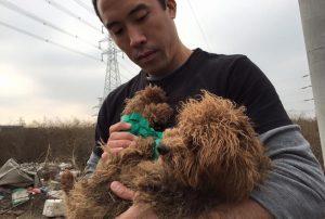 Marc viaja para Ásia para salvar cães do comércio de carne. (Foto: Reprodução / Marc Ching)