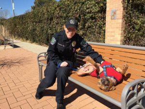 De acordo com as oficiais, o trabalho voluntário faz bem tanto para os animais quanto para elas mesmas. (Foto: Reprodução / Amy Thomas)
