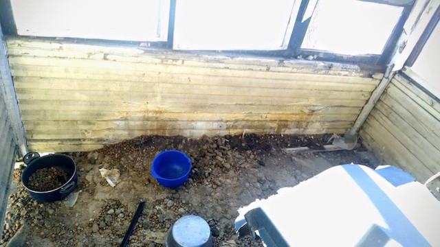 Local onde o cão estava. Havia comida espalhada pelo chão. (Foto: Reprodução / The Dodo)