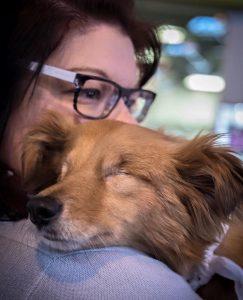 Nym voltou a confiar em humanos e adora receber abraços. (Foto: Reprodução / Sian Porter)