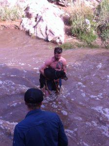 Homem não hesitou em salvar o cão desconhecido e pulou no riacho. (Foto: Reprodução / Sara Melnicoff)