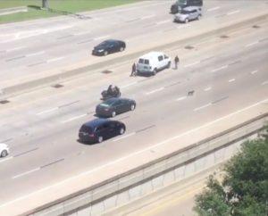 A ajuda do policial foi essencial para que o animal pudesse sair da estrada em segurança. (Foto: Reprodução / CBS DFW)