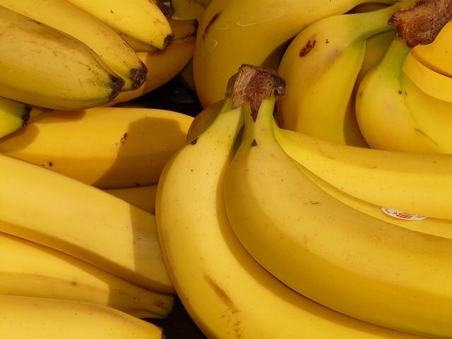 Banana. (Foto: Reprodução / The I Heart Dogs)